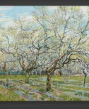 Vincent van Gogh: The White Orchard