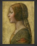 Leonardo Da Vinci: The Beautiful Princess 1495