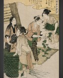 Kitagawa Utamaro: Women spreading mulberry leaves over silkworm cocoons