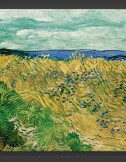 Vincent van Gogh: Wheatfield with Cornflowers