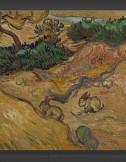 Vincent van Gogh: Landscape with Rabbits