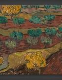 Vincent van Gogh: Olive Trees on a Hillside