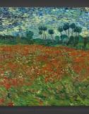 Vincent van Gogh: Poppy Field 1890