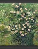 Vincent van Gogh: Roses 1889