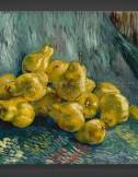 Vincent van Gogh: Still Life with Quinces