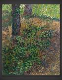 Vincent van Gogh: Undergrowth 1887